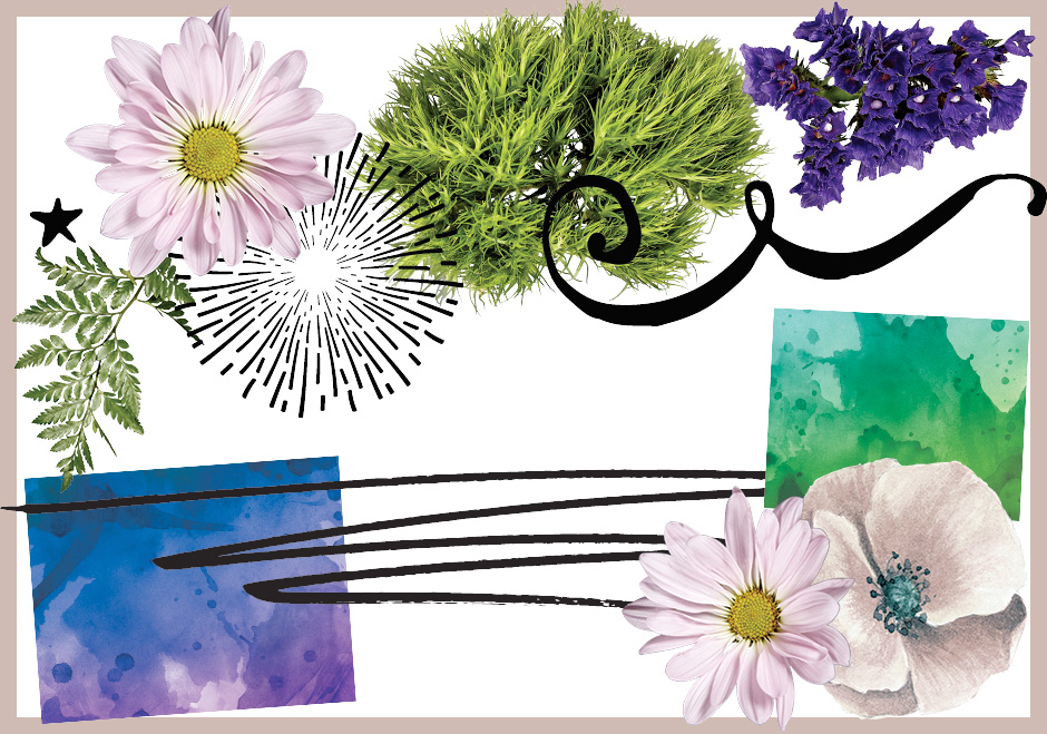 Floral Graphics, Watercolour Textures, Screentone Brushes, and Decorative Elements Pack