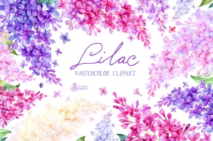 Lilac: Watercolor Collection