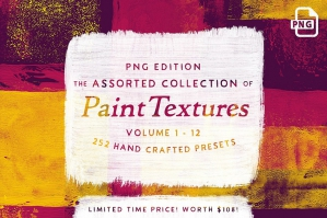 252 Assorted Real Paint Textures