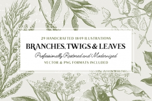 29 Branches Twigs & Leaves