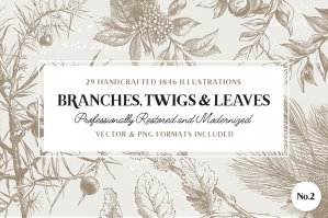29 Branches Twigs Leaves No. 2