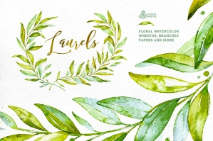 Laurels Floral Collection