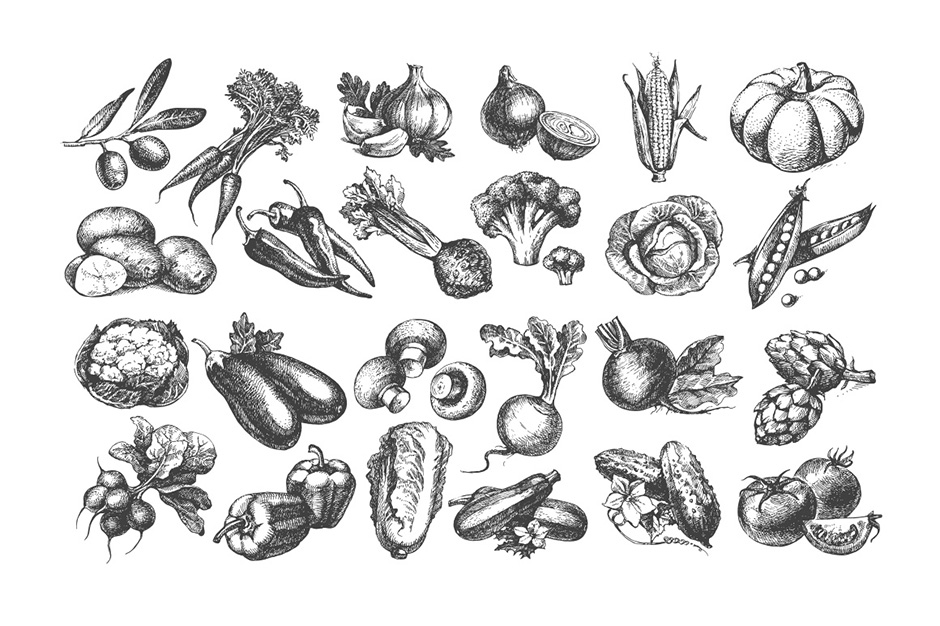 Sketch Vegetables Bundle