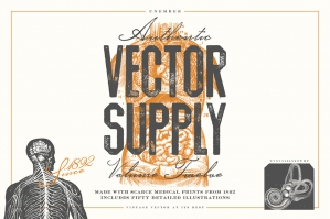 Unember Vector Supply Volume 12