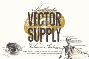 Unember Vector Supply Volume 16