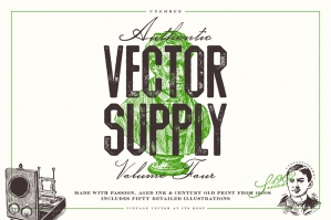 Unember Vector Supply Volume 4