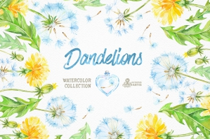 Dandelions Floral Collection