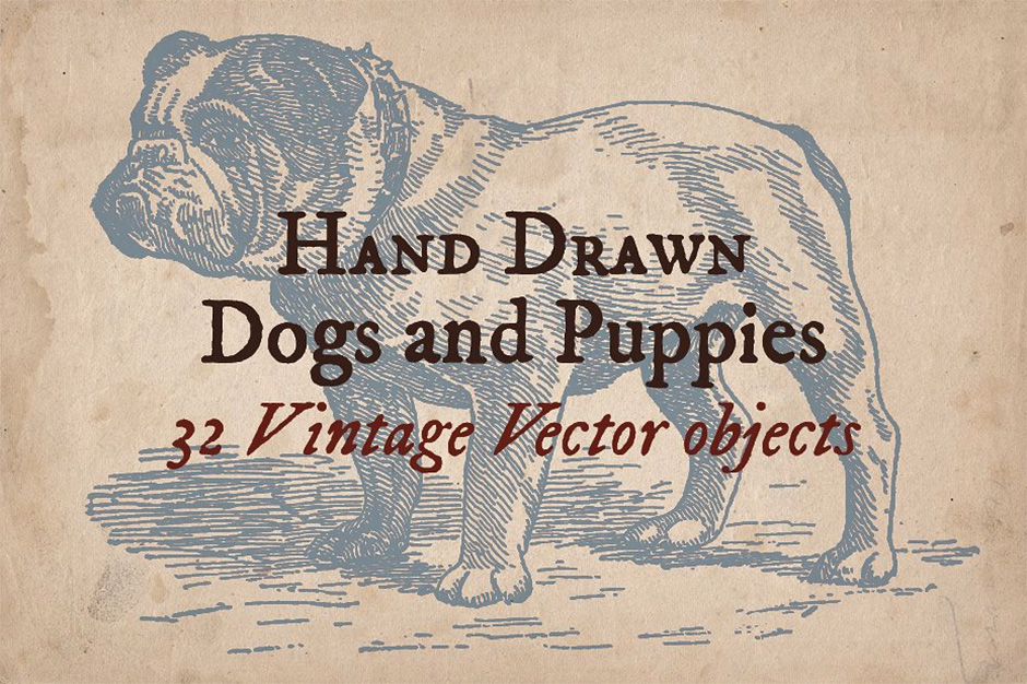 32 Hand-drawn Dogs and Puppies