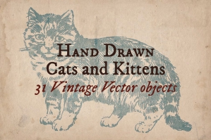 31 Hand-drawn Cats and Kittens