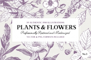 39 Plant & Flower Illustrations No. 3
