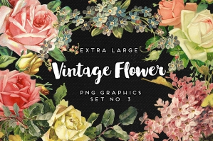 Vintage Flowers Graphics No. 3