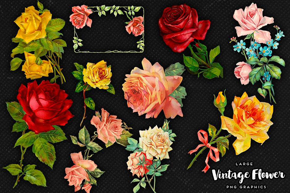 Vintage Flower Graphics No. 5