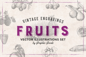 84 Fruits Vintage Engravings