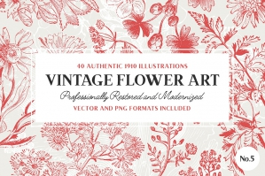 40 Plant & Flower Illustrations No. 5