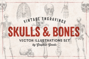 11 Skulls & Bones Illustrations