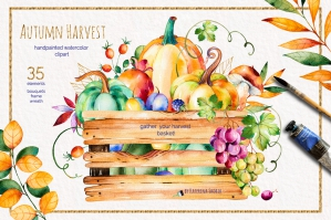 Autumn Harvest: Vibrant Autumn Watercolor Collection