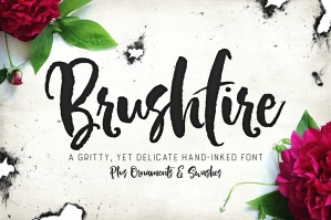 Brushfire Typeface with Extras
