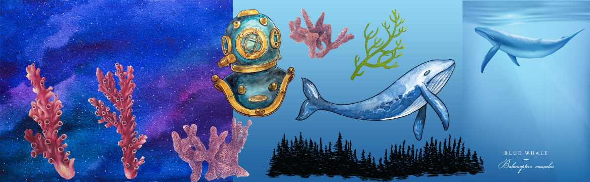 Illustrated, Underwater-themed Vectors and Textures