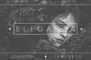 Eleganza 74 BW Lightroom Presets