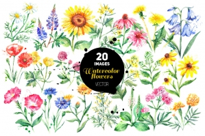 Garden Wild Watercolor Flowers Set