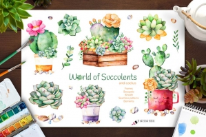 World of Succulents & Cacti