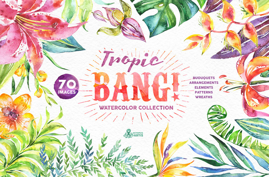 Tropic Bang Watercolor Floral Illustrations