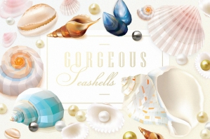 Gorgeous Seashells Elements & Patterns