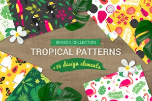 Tropical Patterns + Design Elements