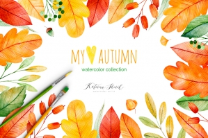 My Lovely Autumn