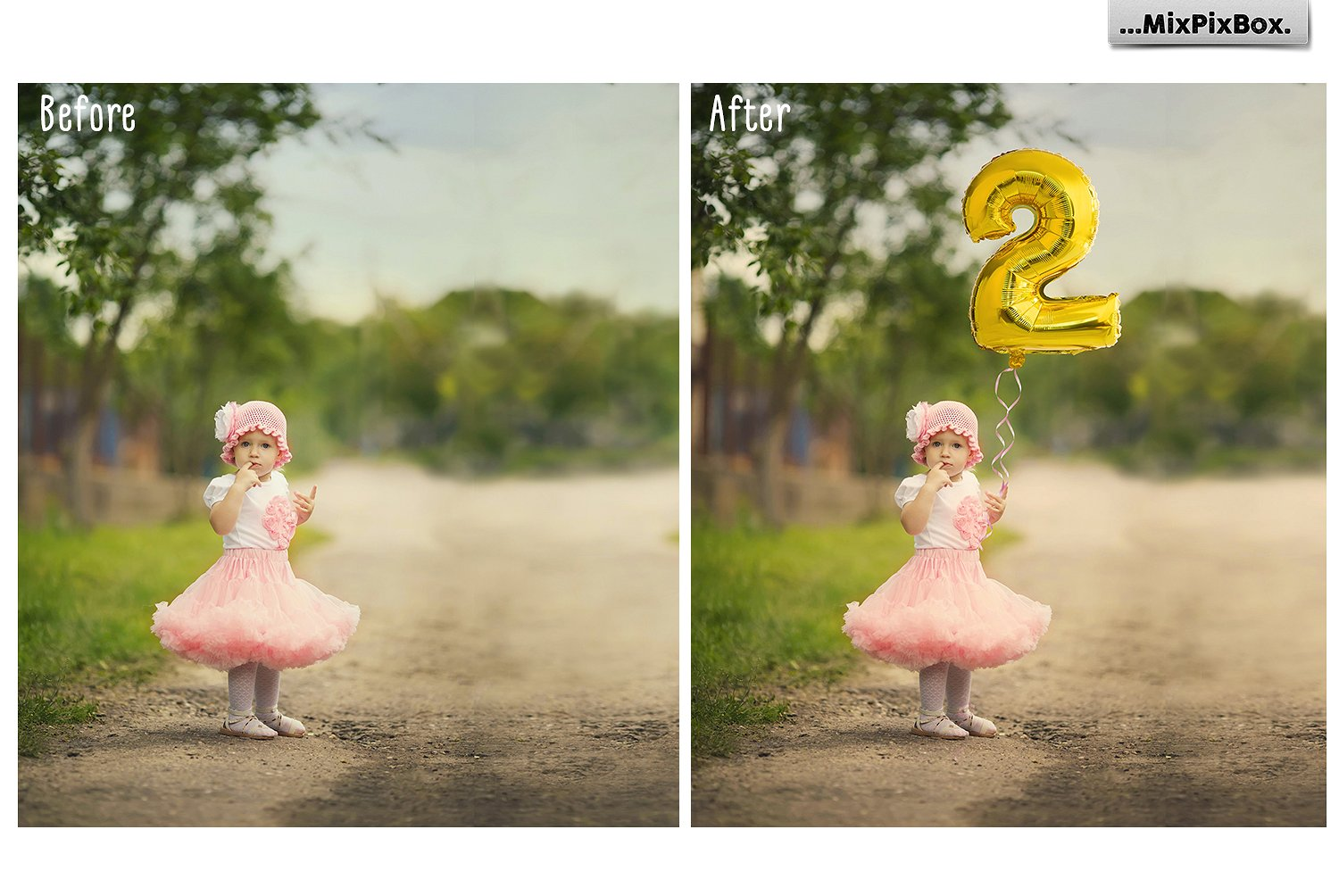 Silver & Gold Number Balloons Overlays