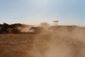 Dusty Trails In The Kalahari Desert Botswana