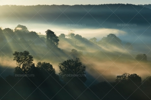 Misty British Country Hillsides At Dawn No. 11