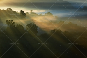 Misty British Country Hillsides At Dawn No. 4