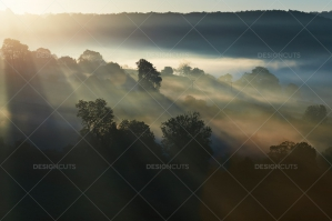Misty British Country Hillsides At Dawn No. 5
