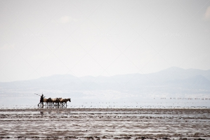 Massai Herder By Lake Natron Kenya