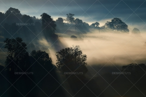 Misty British Country Hillsides At Dawn No. 21