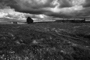 Storm Clouds Over Yorkshire Dales Field With Long House