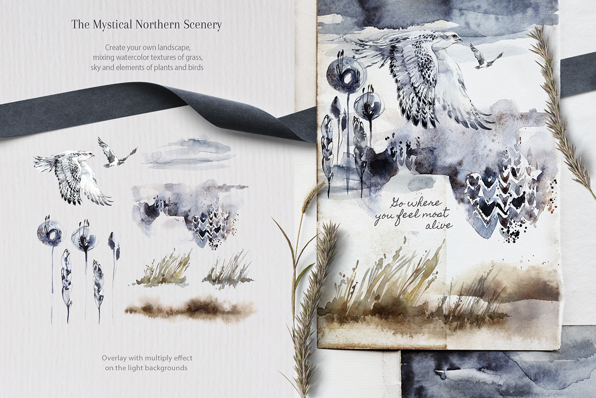 The Northern Fields Watercolor Collection