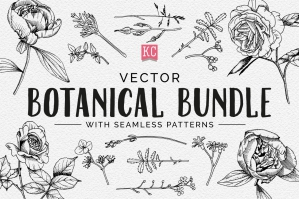 Vector Botanical Illustrations