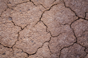 Cracked Earth Of The Sahara Desert No. 5