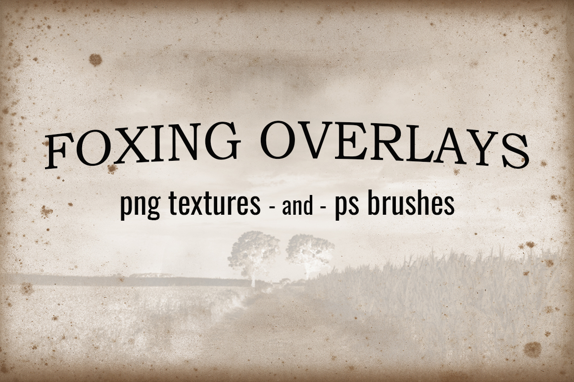 Foxing Overlays - Textures And Brushes