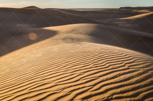 Sand Dunes In The Sahara Desert No. 11