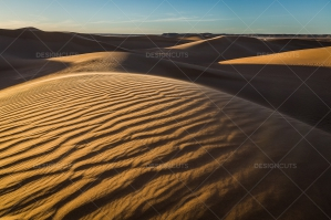 Sand Dunes In The Sahara Desert No. 12