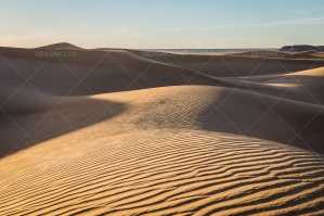 Sand Dunes In The Sahara Desert No. 13