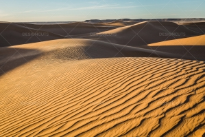 Sand Dunes In The Sahara Desert No. 14