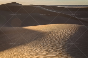 Sand Dunes In The Sahara Desert No. 15
