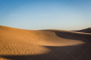 Sand Dunes In The Sahara Desert No. 16