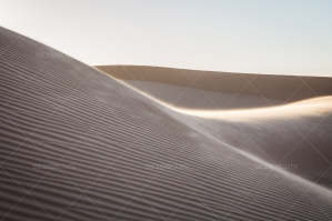 Sand Dunes In The Algerian Sahara No. 9
