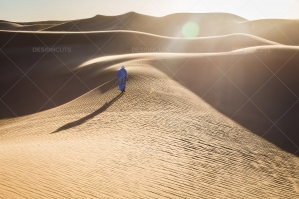 Sand Dunes In The Sahara Desert At Dusk No. 10