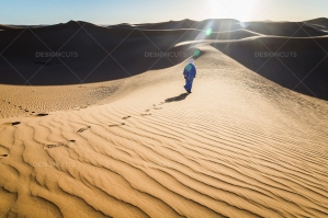 Sand Dunes In The Sahara Desert At Dusk No. 4